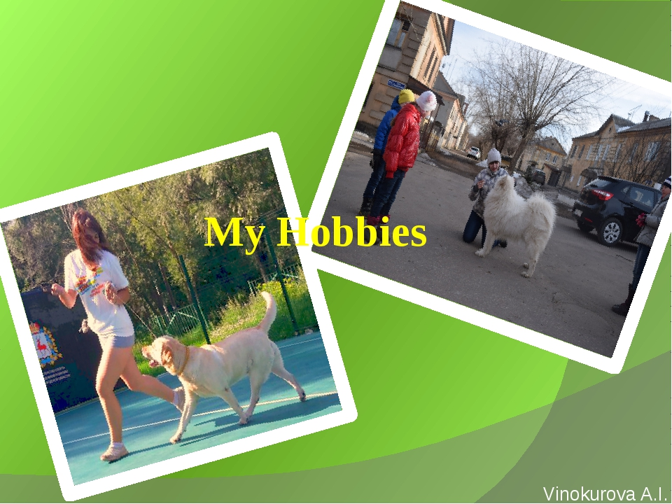 My Hobbies Vinokurova A.I.