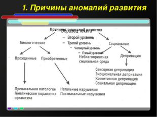 1. Причины аномалий развития