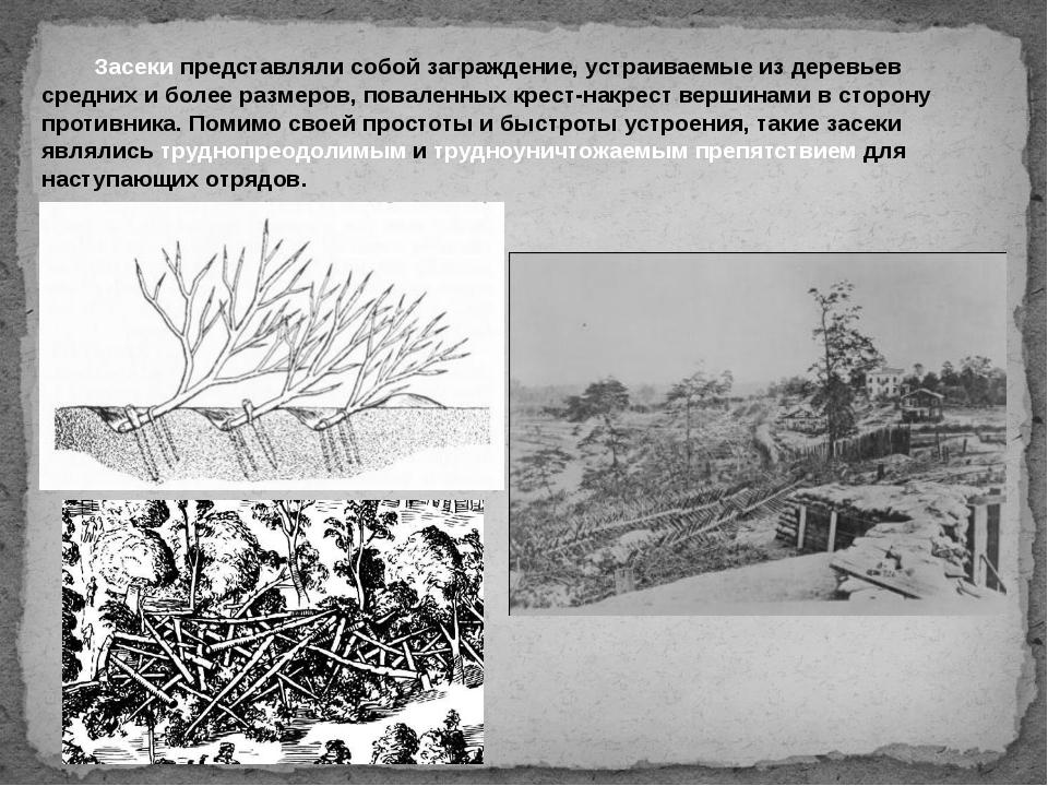 Засеки представляли собой заграждение, устраиваемые из деревьев средних и б...
