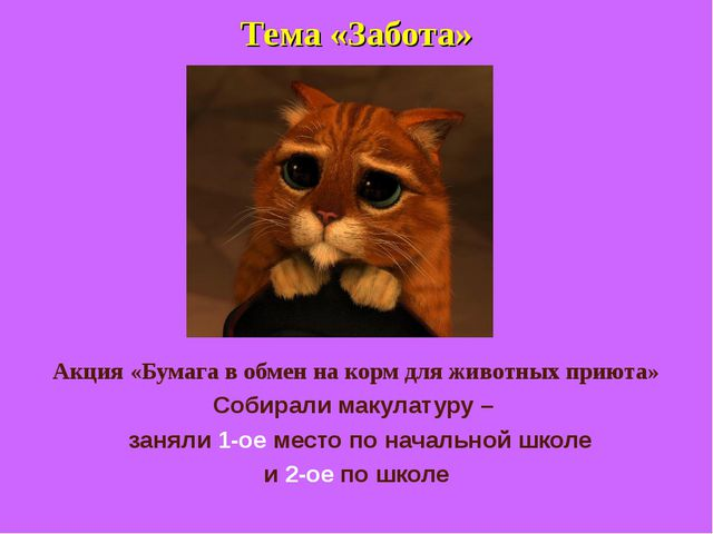 Тема «Забота» Акция «Бумага в обмен на корм для животных приюта» Собирали мак...