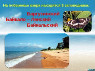 На побережье озера находятся 3 заповедника: Баргузинский Байкало – Ленский Ба