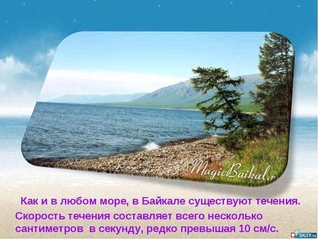 Как и в любом море, в Байкале существуют течения. Скорость течения составляе...
