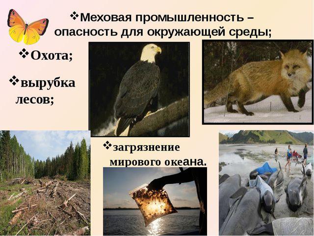 Меховая промышленность – опасность для окружающей среды; Охота; вырубка лесов...