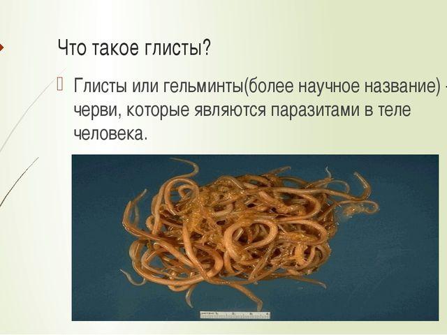 Что такое глисты? Глисты или гельминты(более научное название) – это черви, к...