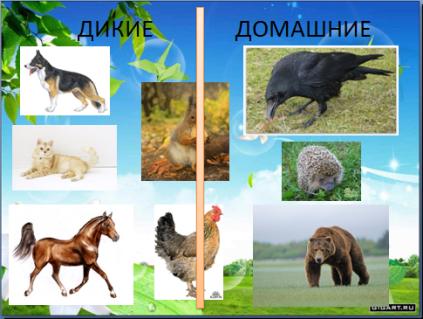 http://www.uchportal.ru/_ld/451/36941470.png
