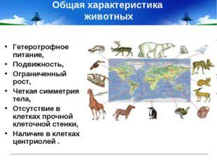 Общая характеристика животных Гетеротрофное питание, Подвижность, Ограниченны