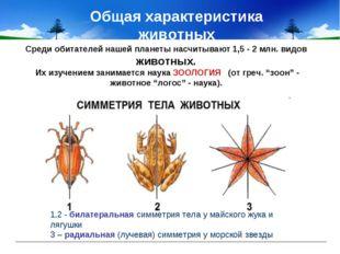 Общая характеристика животных 1,2 - билатеральная симметрия тела у майского ж