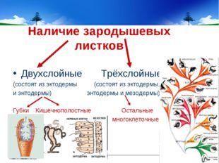 Наличие зародышевых листков Двухслойные Трёхслойные (состоят из эктодермы (со