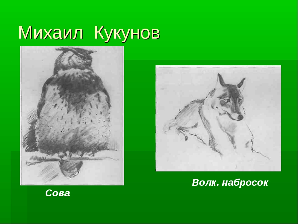 Михаил Кукунов Сова Волк. набросок