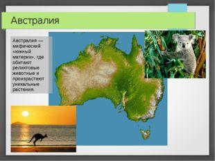 Австралия Австралия — мифический «южный материк», где обитают реликтовые живо