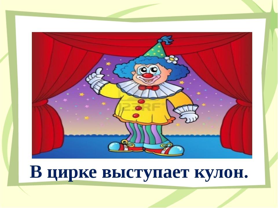 В цирке выступает кулон.