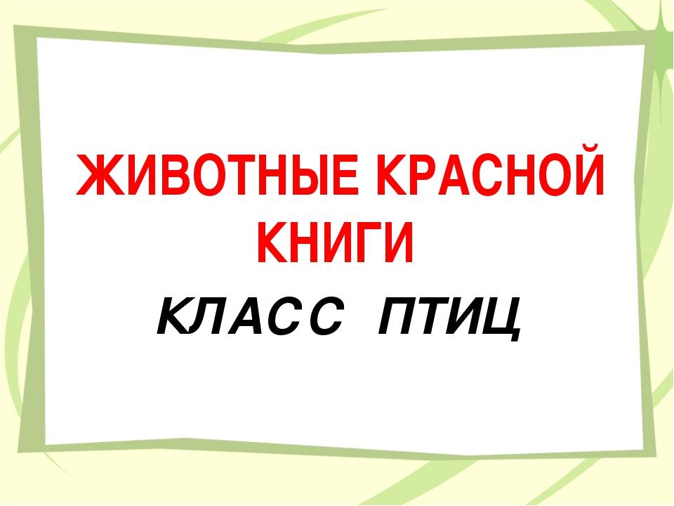 ЖИВОТНЫЕ КРАСНОЙ КНИГИ КЛАСС ПТИЦ