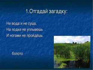 1.Отгадай загадку: Не вода и не суша, На лодке не уплывешь И ногами не пройдё