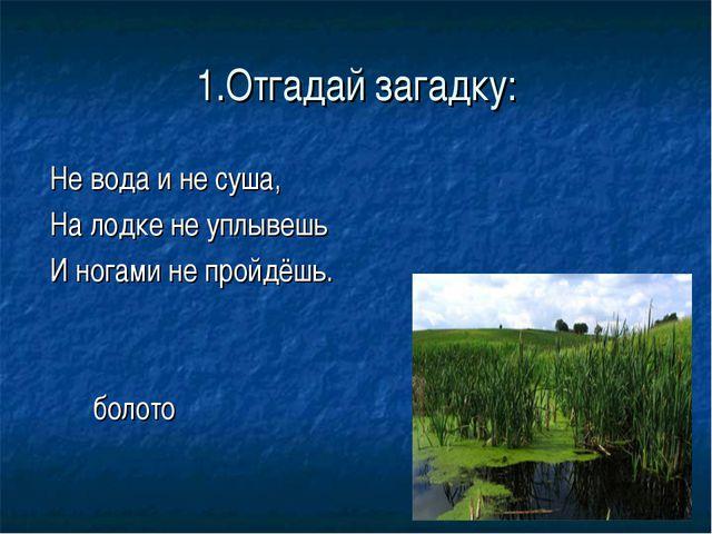1.Отгадай загадку: Не вода и не суша, На лодке не уплывешь И ногами не пройдё...