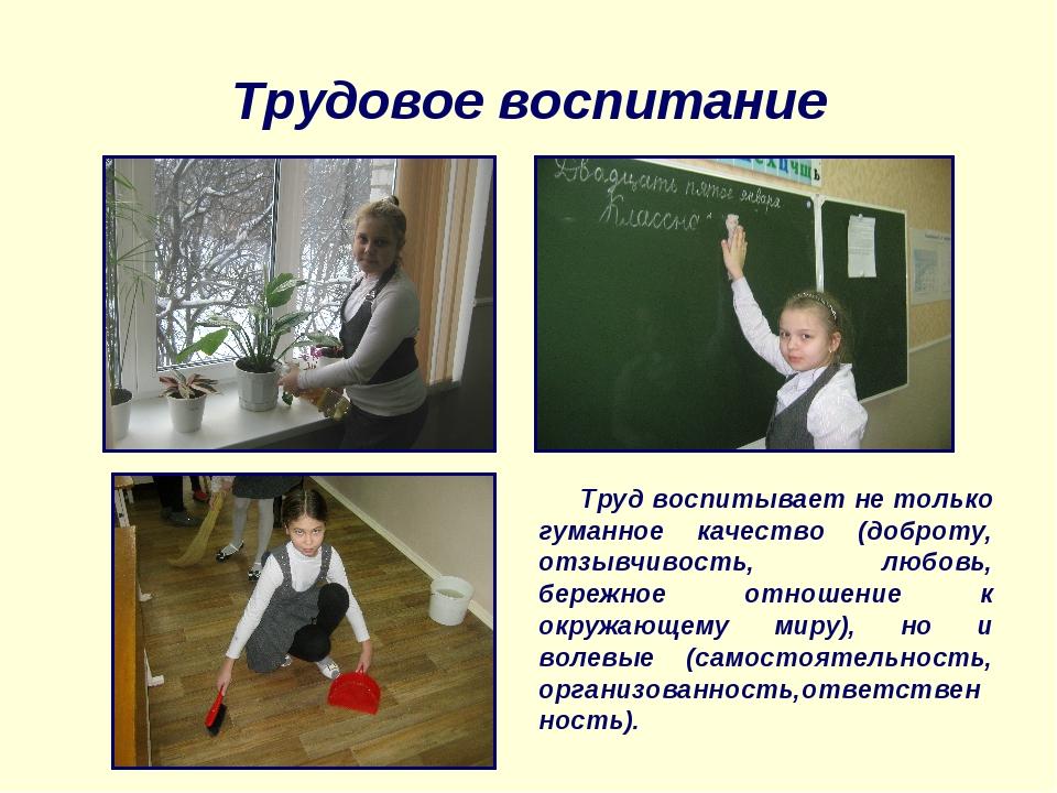 Трудовое воспитание Труд воспитывает не только гуманное качество (доброту, от...