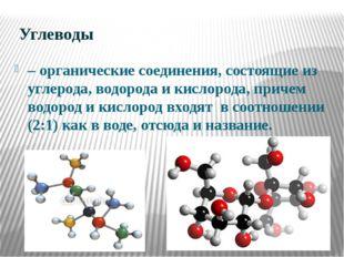 Углеводы – органические соединения, состоящие из углерода, водорода и кислор