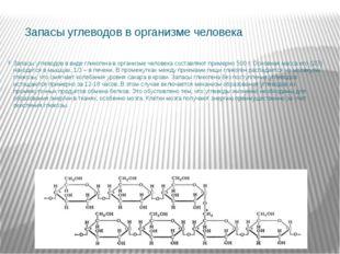 Запасы углеводов в организме человека Запасы углеводов в виде гликогена в орг