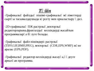 Түйін -Графикалық файлдың пішімі-графикалық мәліметтерді сыртқы тасымалдаушыд