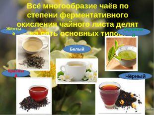 Всё многообразие чаёв по степени ферментативного окисления чайного листа деля