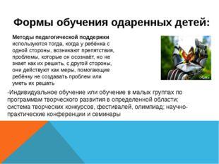 -Индивидуальное обучение или обучение в малых группах по программам творческо