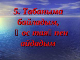 5. Табаныма байладым, Қос таяқпен айдадым