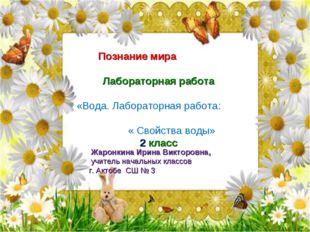 Русский язык Урок-исследование Имя прилагательное 3 класс Познание мира Лабор