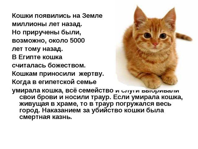 Кошки появились на Земле миллионы лет назад. Но приручены были, возможно, ок...