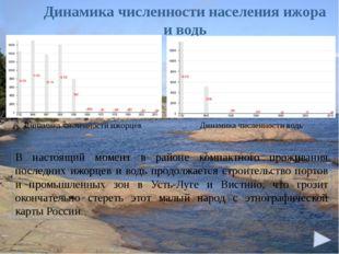 Динамика численности населения ижора и водь В настоящий момент в районе комп