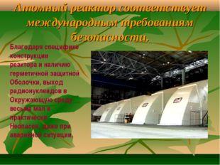 Атомный реактор соответствует международным требованиям безопасности. Благода