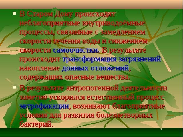 В Старом Дону происходят неблагоприятные внутриводоёмные процессы, связанные...