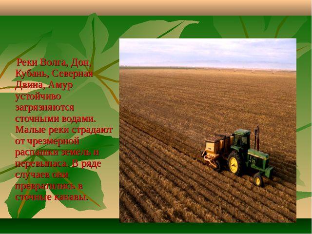Реки Волга, Дон, Кубань, Северная Двина, Амур устойчиво загрязняются сточным...