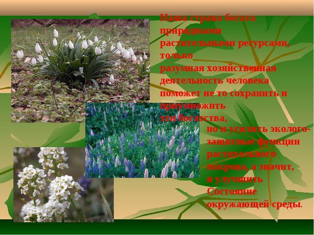 Наша страна богата природными растительными ресурсами, только разумная хозяйс...