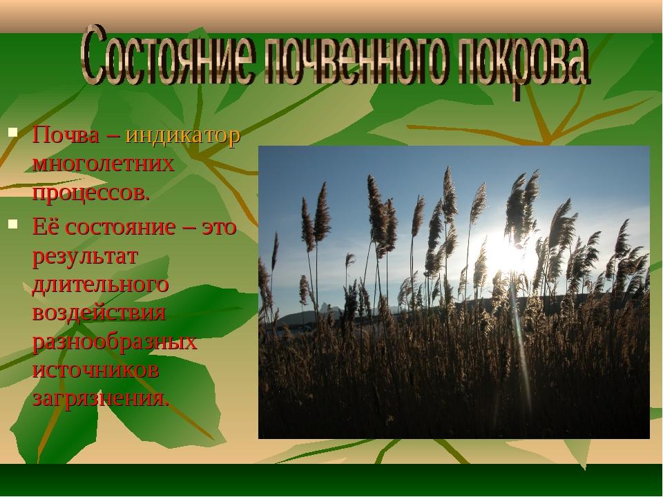 Почва – индикатор многолетних процессов. Её состояние – это результат длитель...