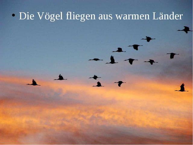 Die Vögel fliegen aus warmen Länder