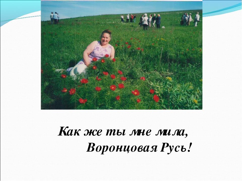 Как же ты мне мила, Воронцовая Русь!