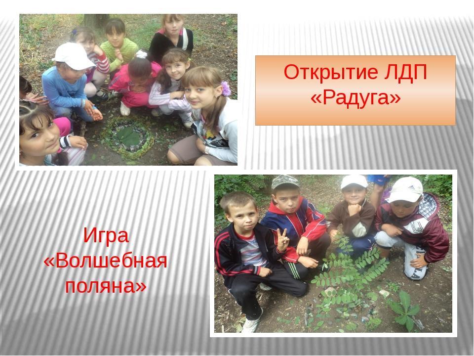 Открытие ЛДП «Радуга» Игра «Волшебная поляна»