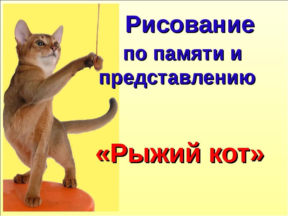 по памяти и представлению «Рыжий кот» Рисование