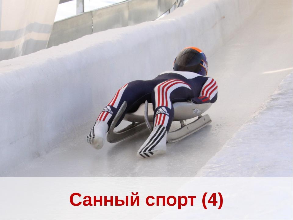 Санный спорт (4)