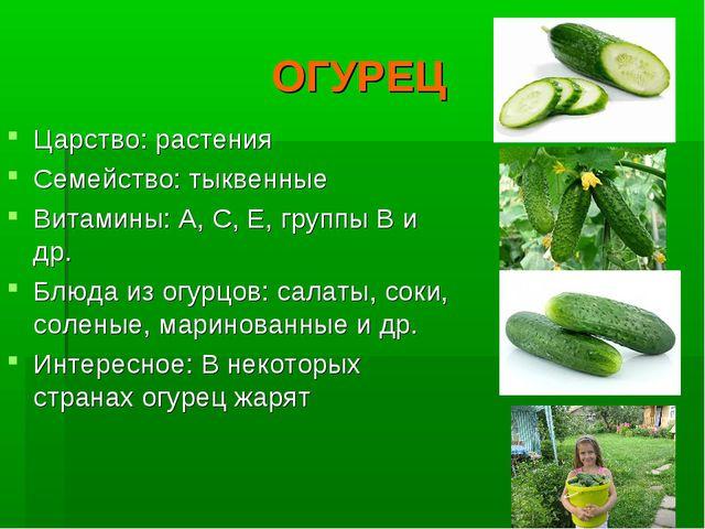 ОГУРЕЦ Царство: растения Семейство: тыквенные Витамины: А, С, Е, группы В и д...
