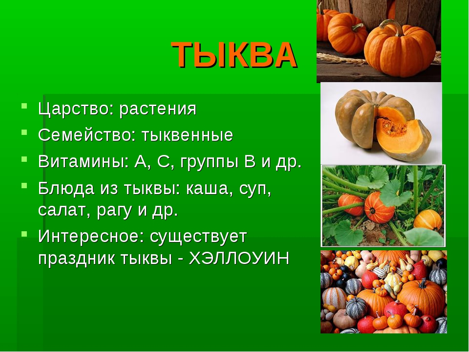 ТЫКВА Царство: растения Семейство: тыквенные Витамины: А, С, группы В и др. Б...