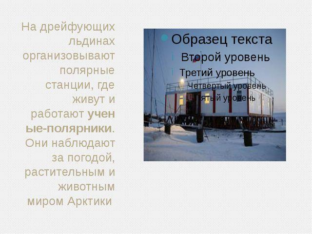 На дрейфующих льдинах организовывают полярные станции, где живут и работаюту...