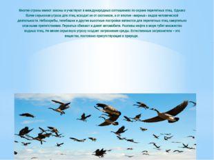 Многие страны имеют законы и участвуют в международных соглашениях по охране