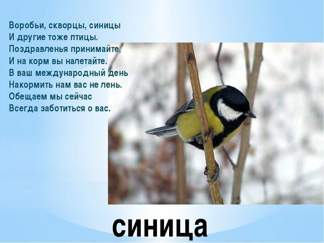 синица Воробьи, скворцы, синицы И другие тоже птицы. Поздравленья принимайте,...