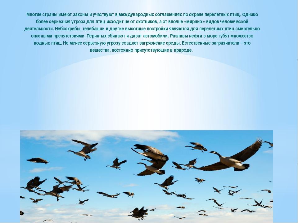 Многие страны имеют законы и участвуют в международных соглашениях по охране...