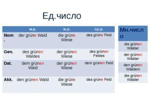 Ед.число м.р.ж.р.ср.р. Nom. der grüne Walddie grüne Wiesedas grüne Feld
