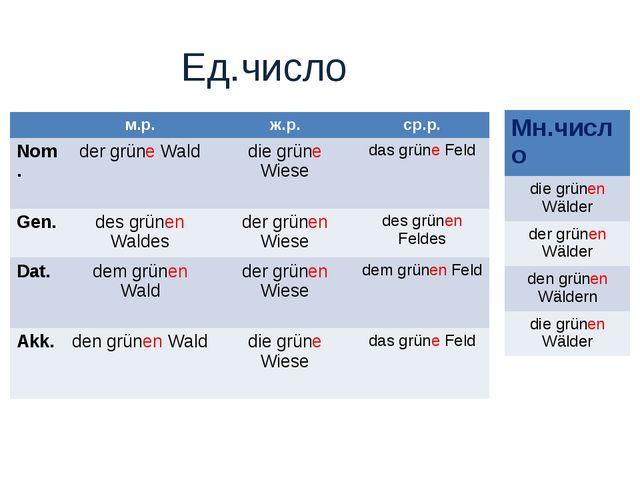 Ед.число м.р.ж.р.ср.р. Nom. der grüne Walddie grüne Wiesedas grüne Feld...