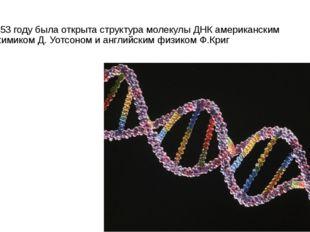 В 1953 году была открыта структура молекулы ДНК американским биохимиком Д. Уо