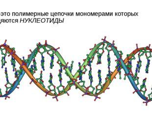 НК-это полимерные цепочки мономерами которых явдяются НУКЛЕОТИДЫ
