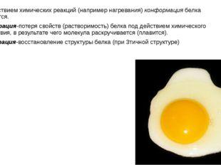 Под действием химических реакций (например нагревания) конформация белка изме