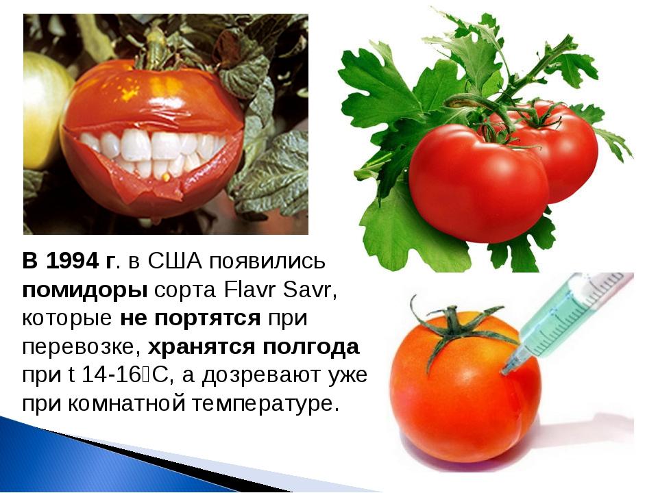 В 1994 г. в США появились помидоры сорта Flavr Savr, которые не портятся при...